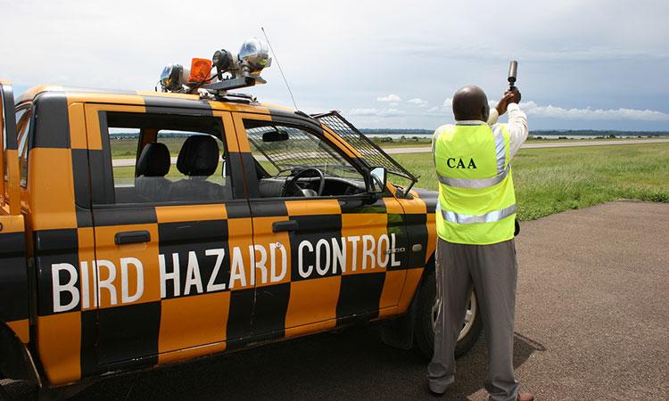 Bird-Hazard-and-Wildlife-Control-at-Entebbe-International-Airport